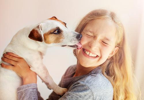 produits-veterinaires-pharmacie-du-stade-bruges